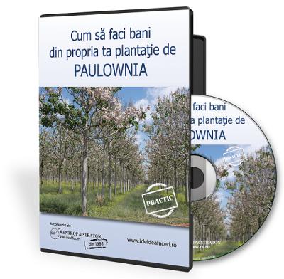 Propria ta Plantatie de Paulownia