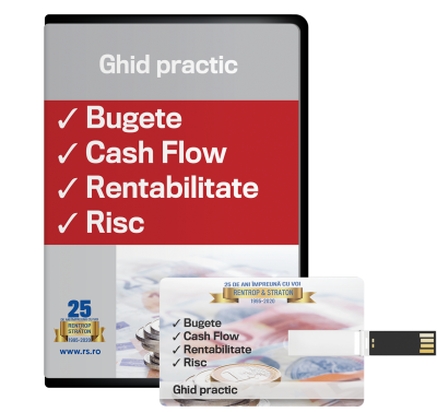 Bugete, cash flow, rentabilitate, risc - ghid practic