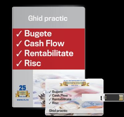 Bugete, cash flow, rentabilitate, risc - ghid practic