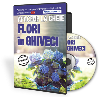 Afacere la cheie cu flori in ghiveci