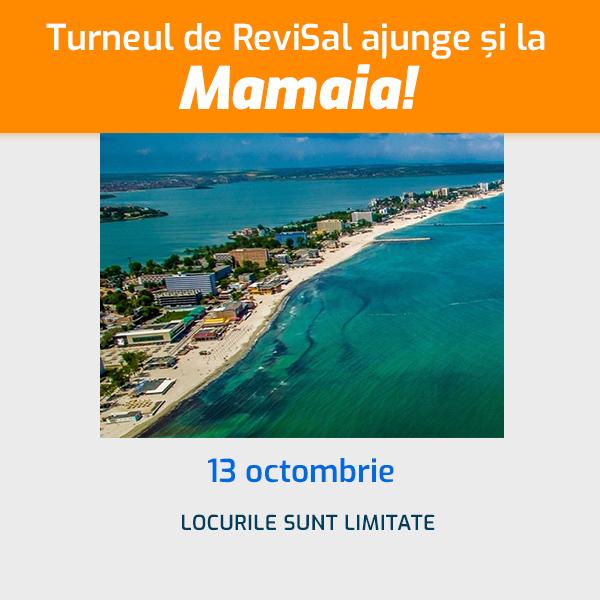 Atelierul de ReviSal - Mamaia, 13 octombrie