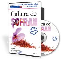 Cultura de sofran